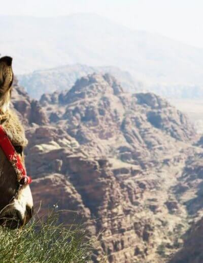 Privát Jordánia utazás túra