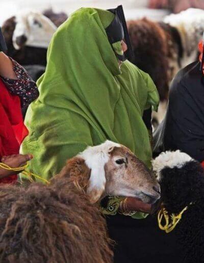 Privát utazás Omán nők