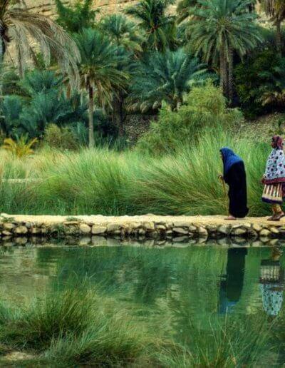 Privát utazás Omán oázis