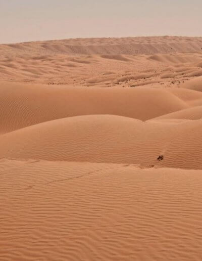 Privát utazás Omán sivatag