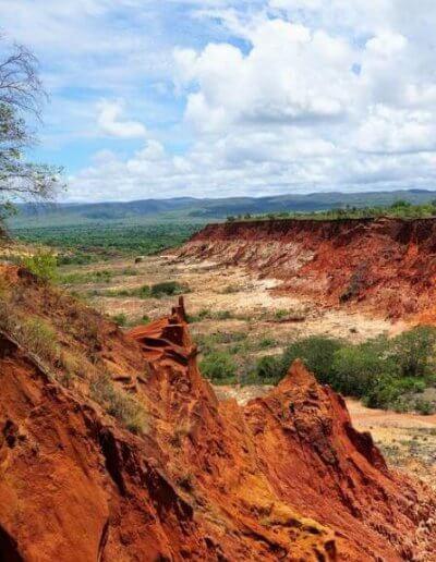 Privát utazás Madagaszkár park
