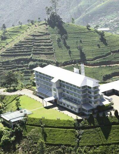 Privát utazás Sri-Lanka tea factory